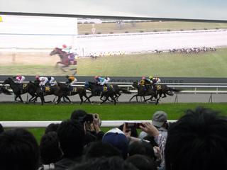 024 race.JPG