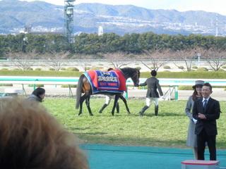 024 win02.JPG