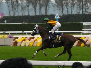 022 run11.JPG